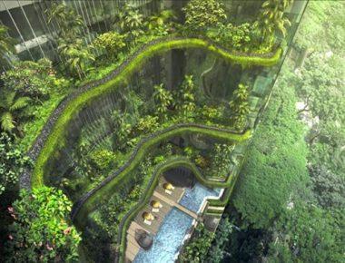 Mẫu thiết kế công trình nhà xanh